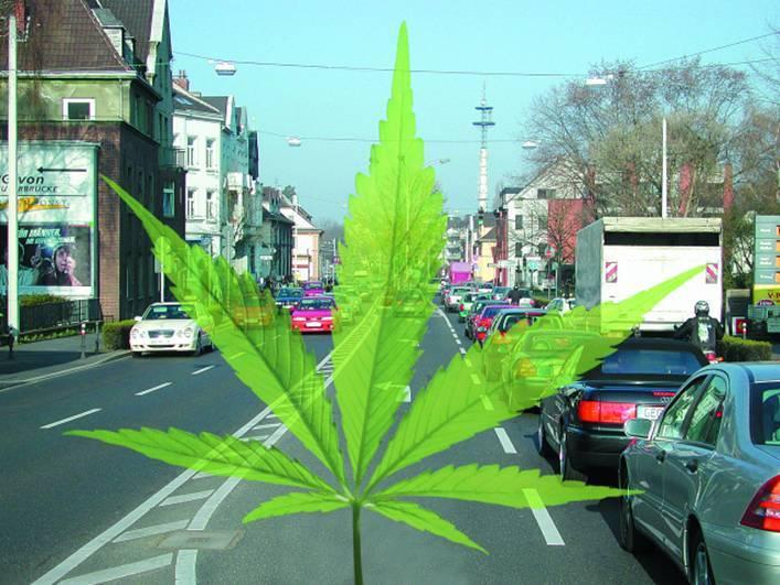 fahren unter cannabis