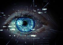 Trigon-Modell: Durchblick im Digitalisierungs-Dschungel