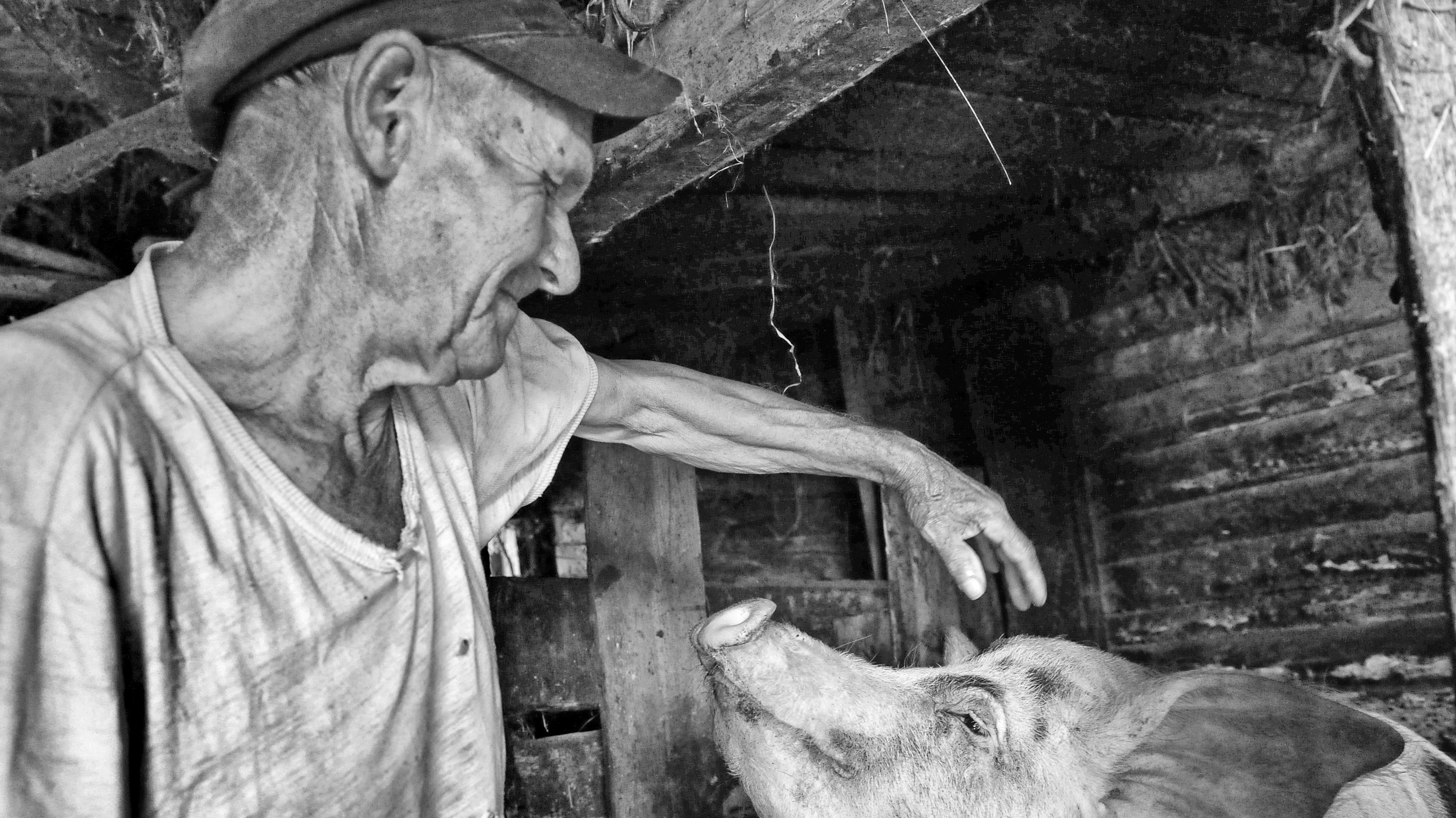 Tschernobyl Opfer Bilder