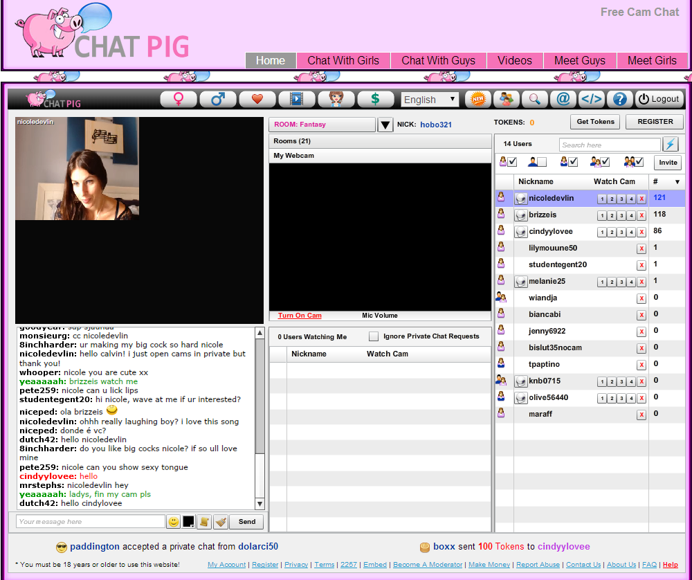 Webcam chat rooms like omegle